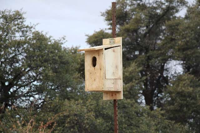 Bird house at the LDV Vineyard